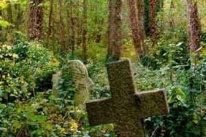 Overgrown graves - how important is conditional mortality concept